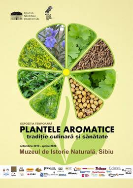 Expoziţia: Plantele aromatice – tradiție culinară și sănătate