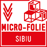 FITS INAUGUREAZĂ PLATFORMA MICRO-FOLIE SIBIU. HOTSPOT CULTURAL BRD